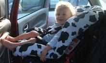infant car seat cover reviews