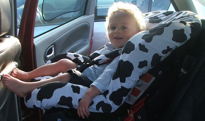infant car seat cover reviews