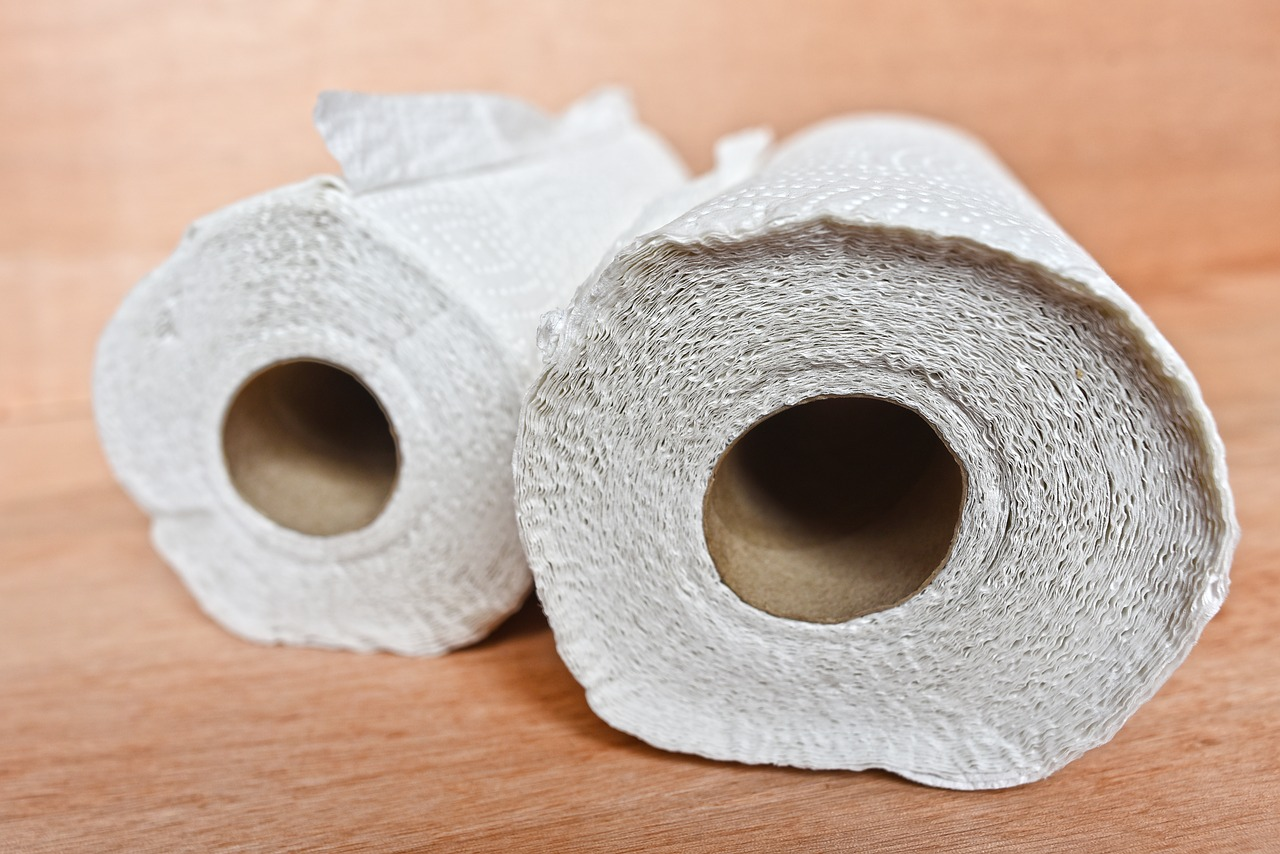 paper towels as part of the ultimate auto mechanic tools list